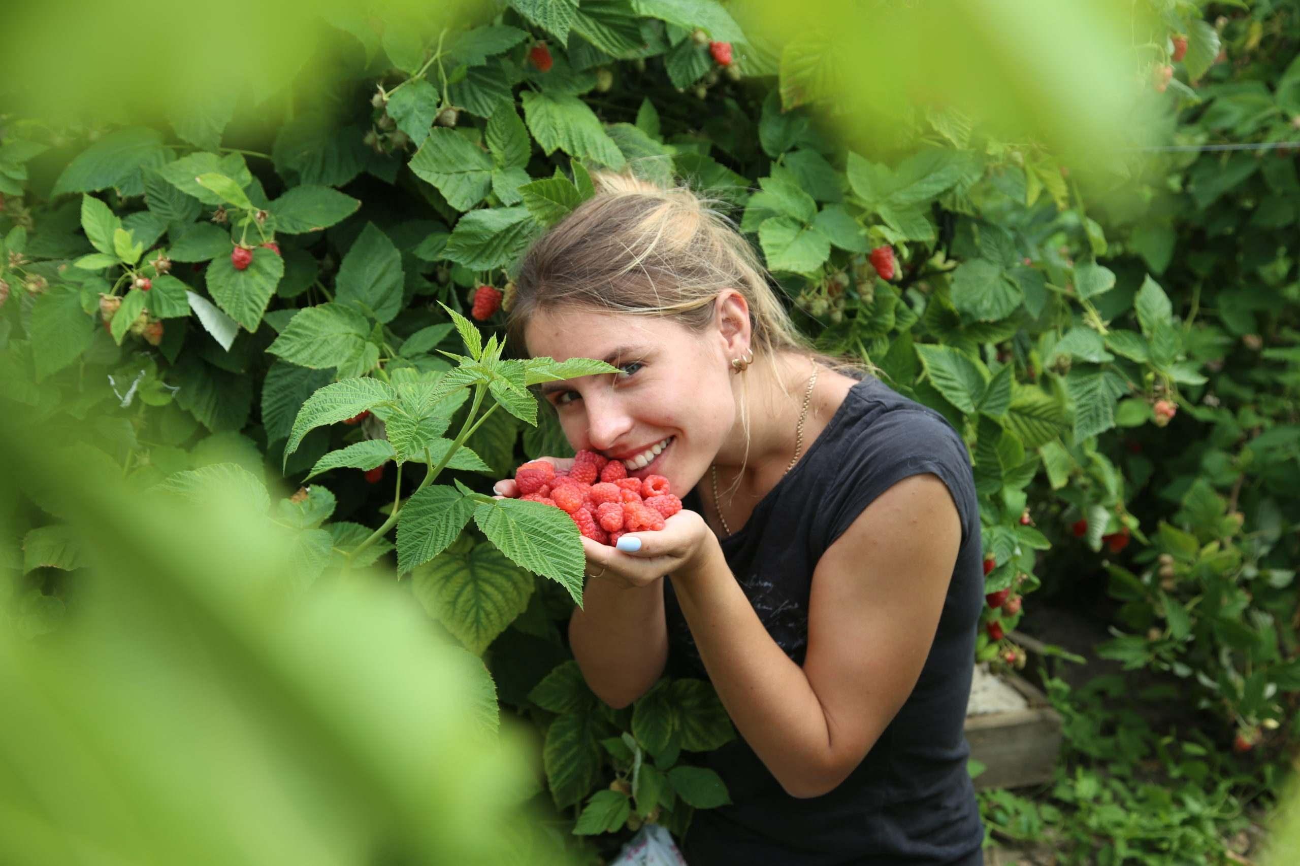 Несколько секретов, как в Новороссийске жарким летом спасти урожай