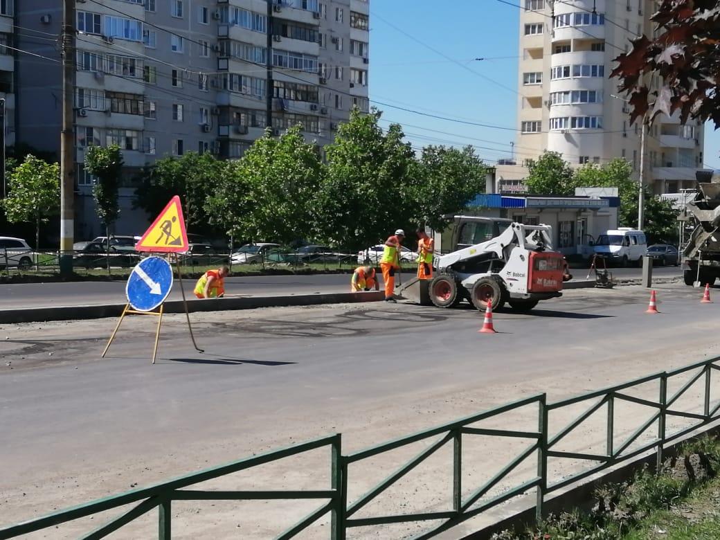 В Новороссийске  можжевельники послужат безопасности движения