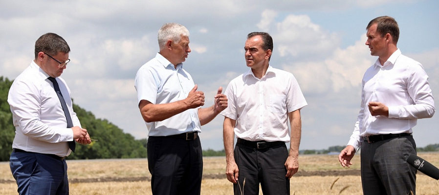 В Краснодарском крае завершается уборочная кампания. Собрали  более 7,7 млн тонн зерна
