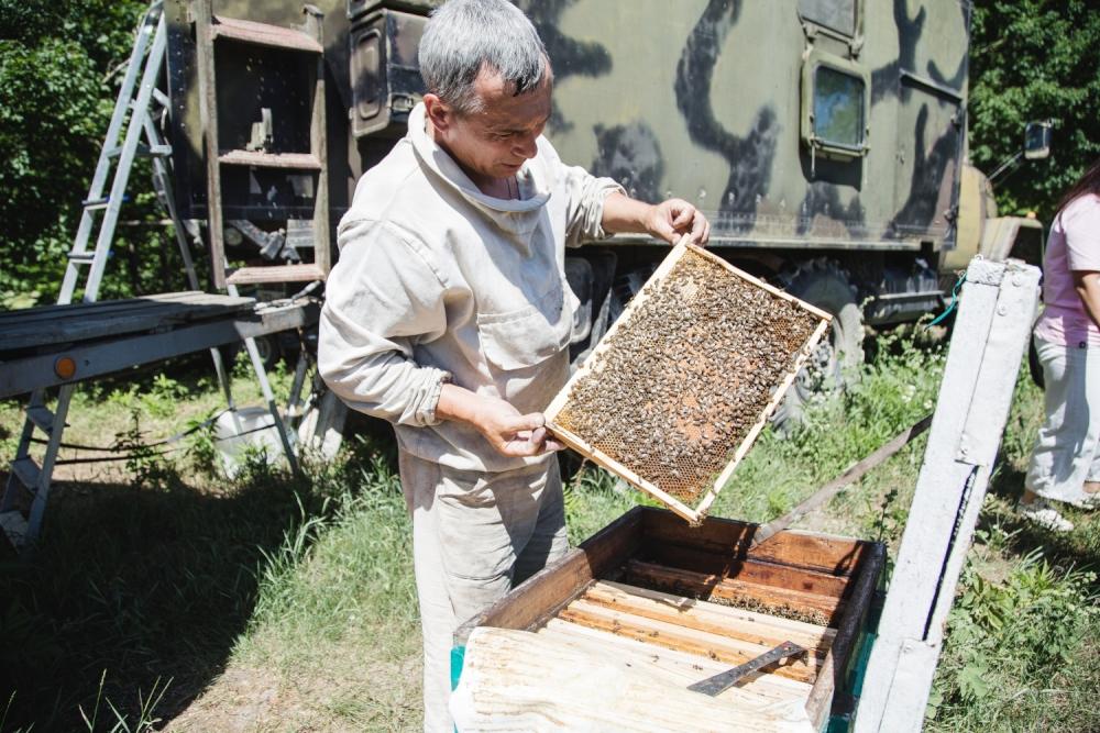 Под Новороссийском пчеловоды создают экодеревню