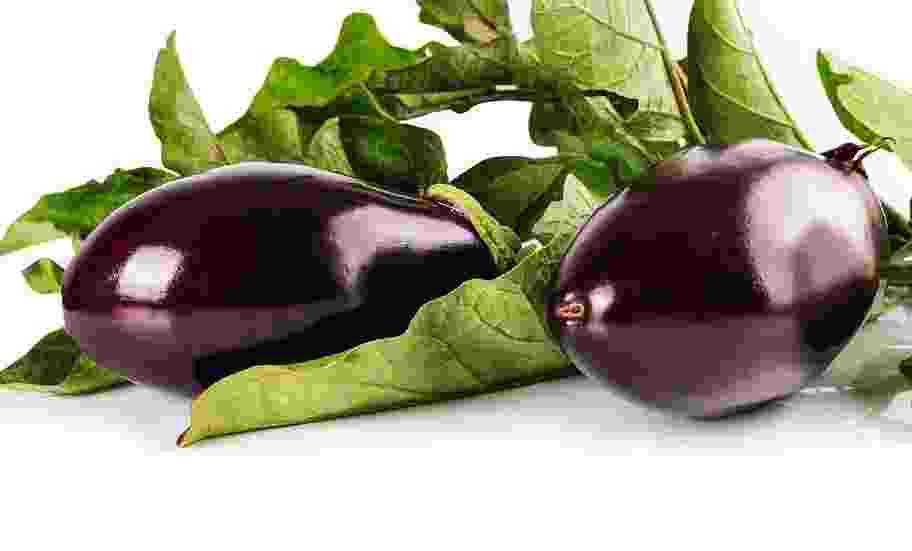 Баклажан – удивительная ягода: 6 интересных фактов