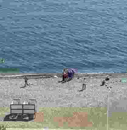 В Новороссийске на пляже у «Нептуна» утонул человек