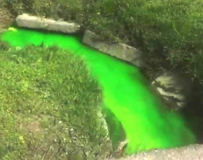 В Новороссийске солдаты подкрасили воду в ярко-зеленый цвет