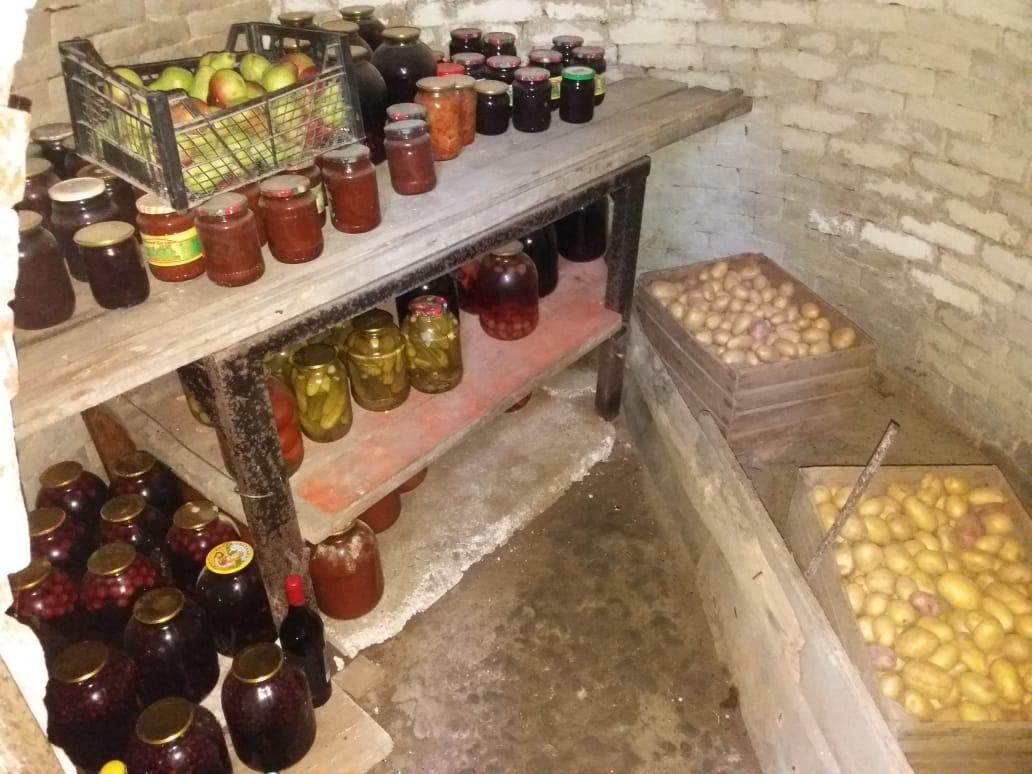 Секреты создания погреба для фруктов и овощей: идеальный природный холодильник