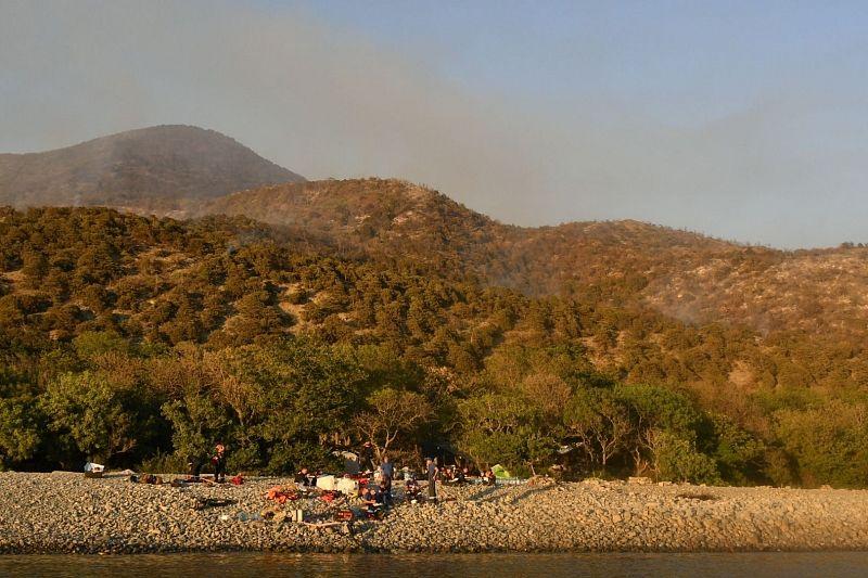 Территорию заповедника «Утриш», где три дня тушили пожар, теперь проливают водой, чтобы предотвратить новые возгорания