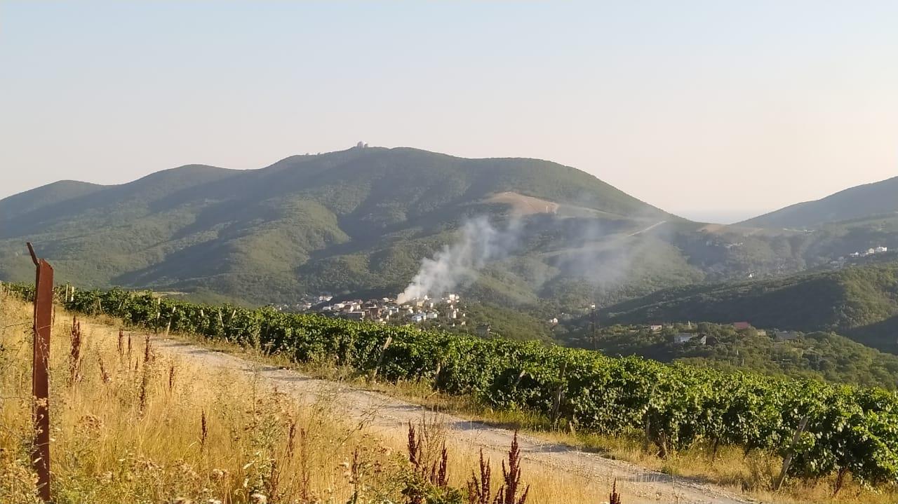 В Новороссийске на даче сгорел пенсионер