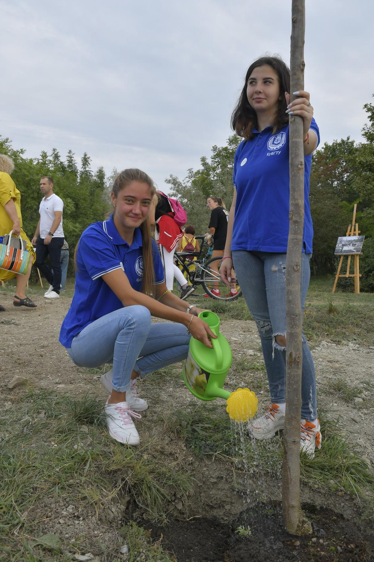 В Новороссийске будет еще один благоустроенный парк — дендропарк