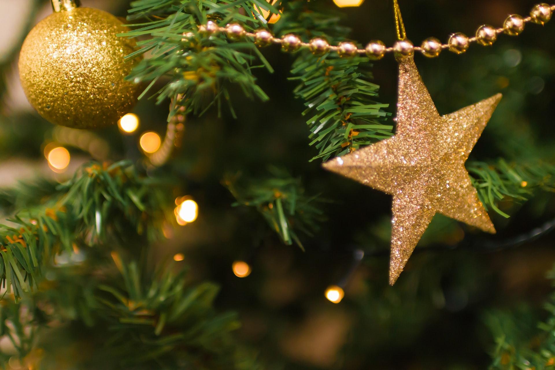 В Новороссийске новогодние елки создадут по макетам местных жителей