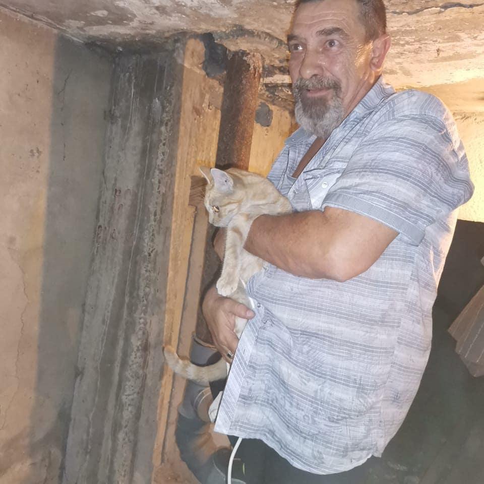 В Новороссийске кота достали из вентиляции только на седьмой день