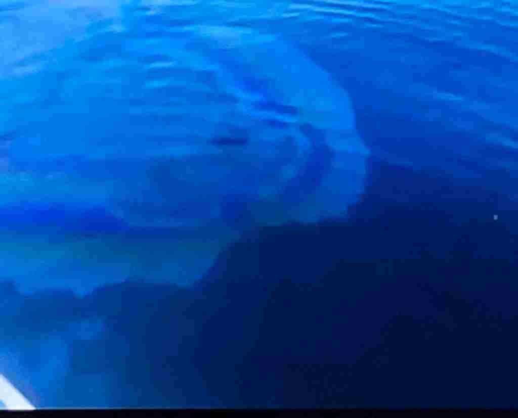 Под Новороссийском в месте затопления «Адмирала Нахимова» на воде появились следы топлива