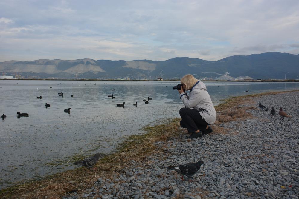 Фотограф из Новороссийска смогла снять «летающую драгоценность» и сотни других уникальных птиц