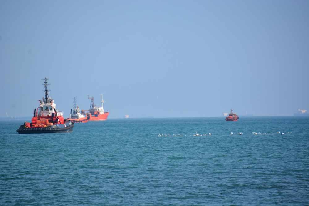 Один из терминалов Новороссийска оштрафовали за загрязнение Черного моря