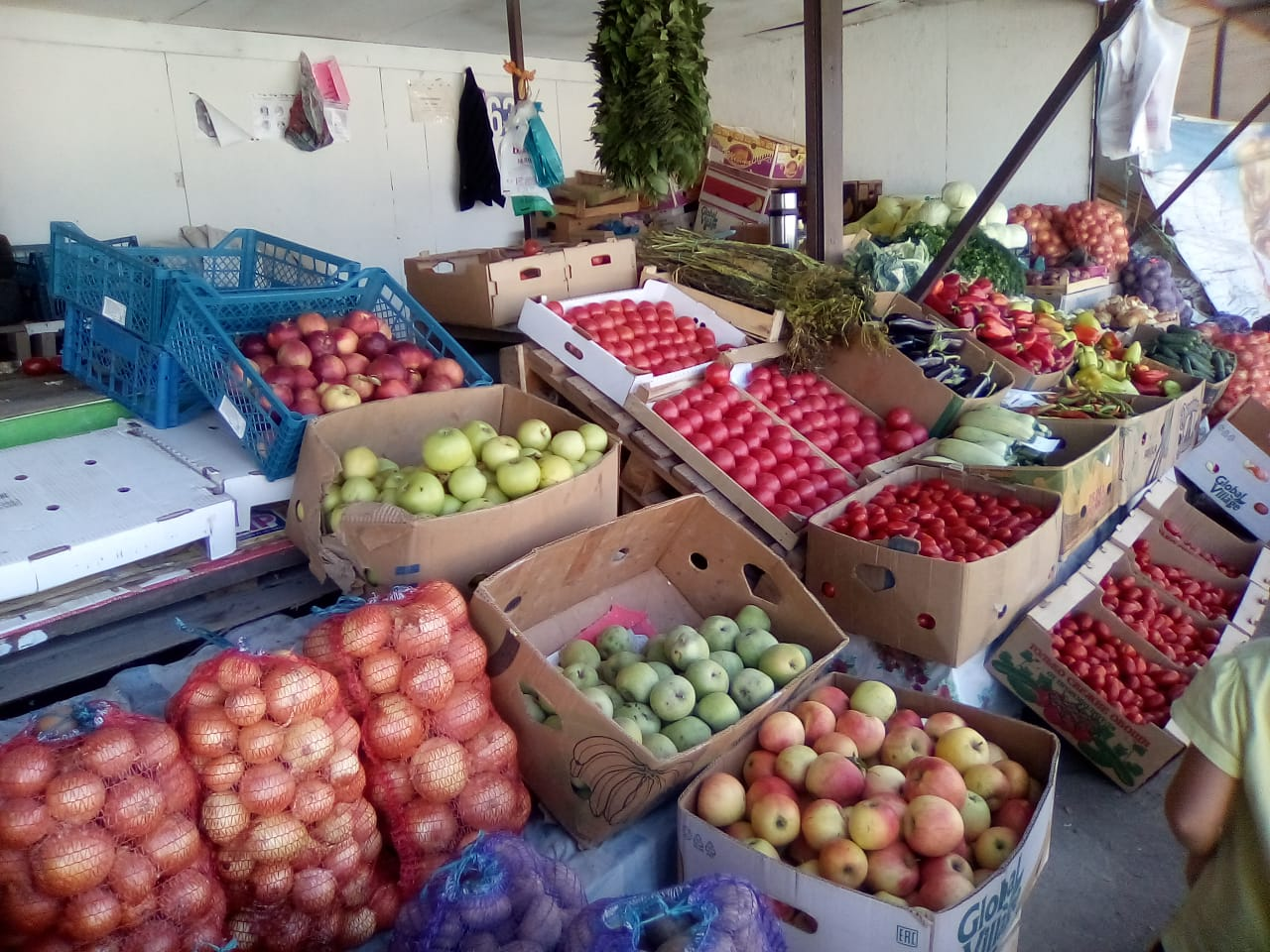 Роспотребнадзор готов пообщаться с народом по поводу качества овощей и фруктов