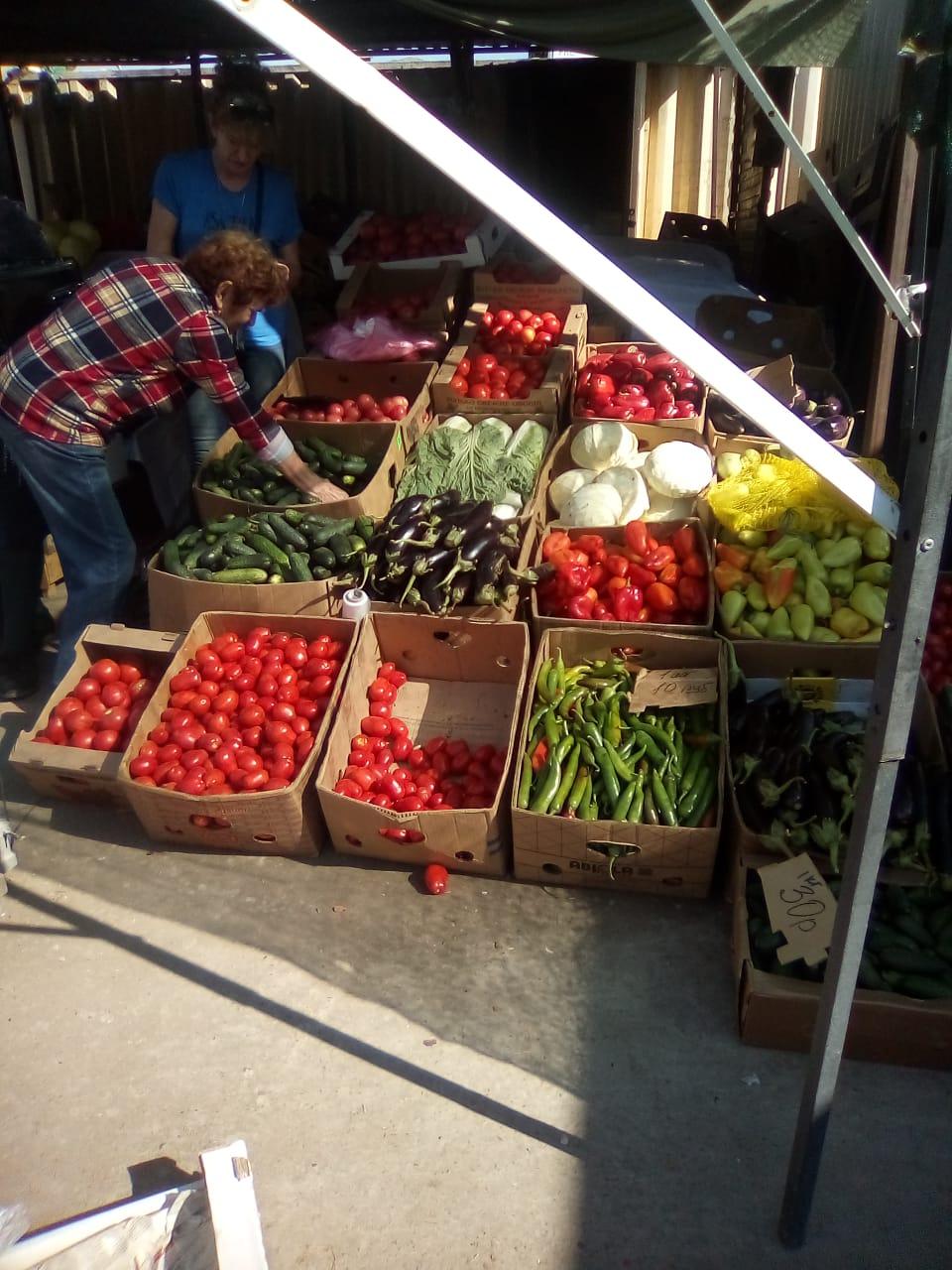 Почему в Новороссийске такие высокие цены на овощи?