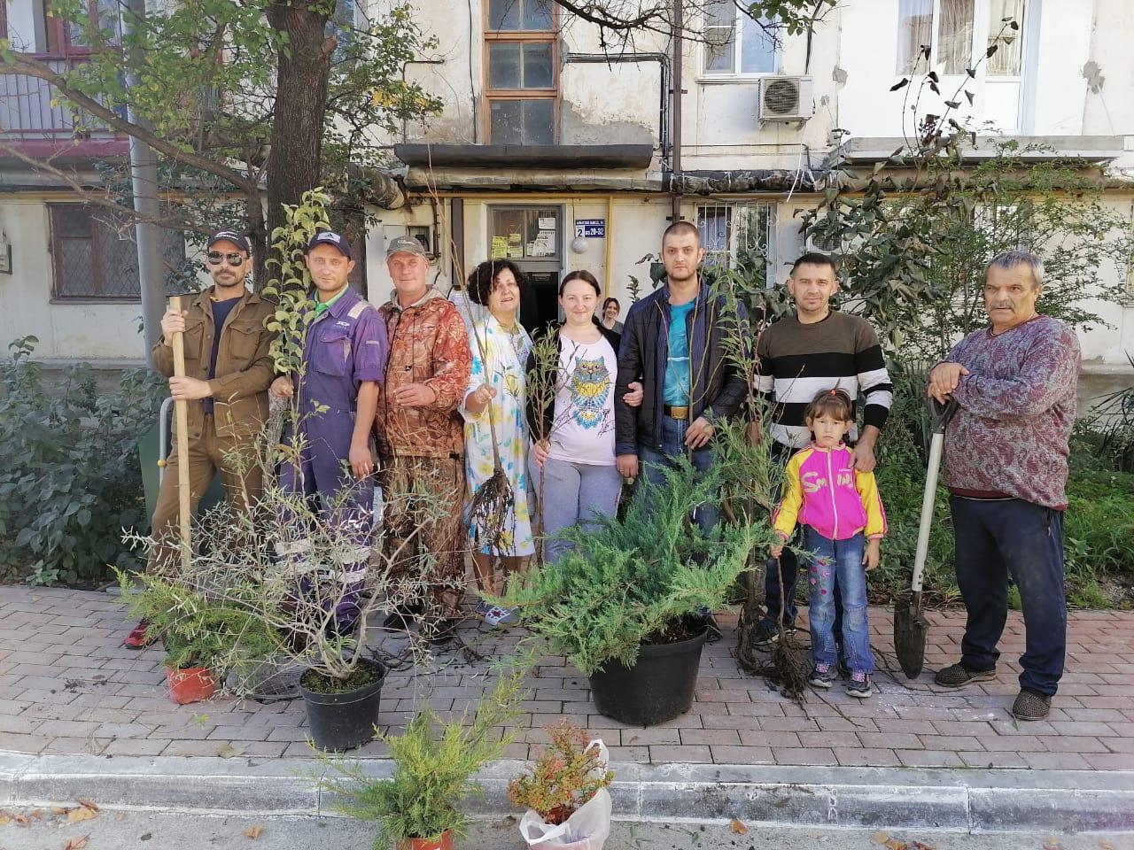 Новороссийцы своими силами озеленили свой двор: высадили 40 деревьев и кустов
