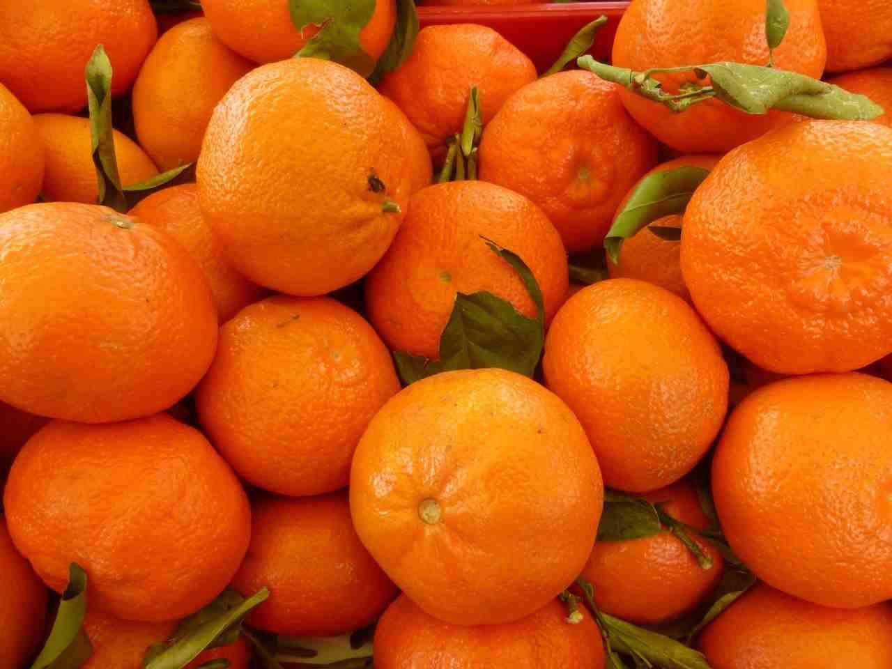 «Абхазские» мандарины в Новороссийск приходят из разных стран