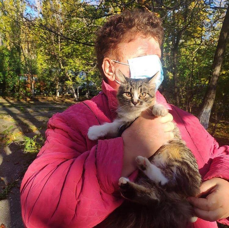 На проспекте Ленина в Новороссийске развернули целую операцию по спасению кота