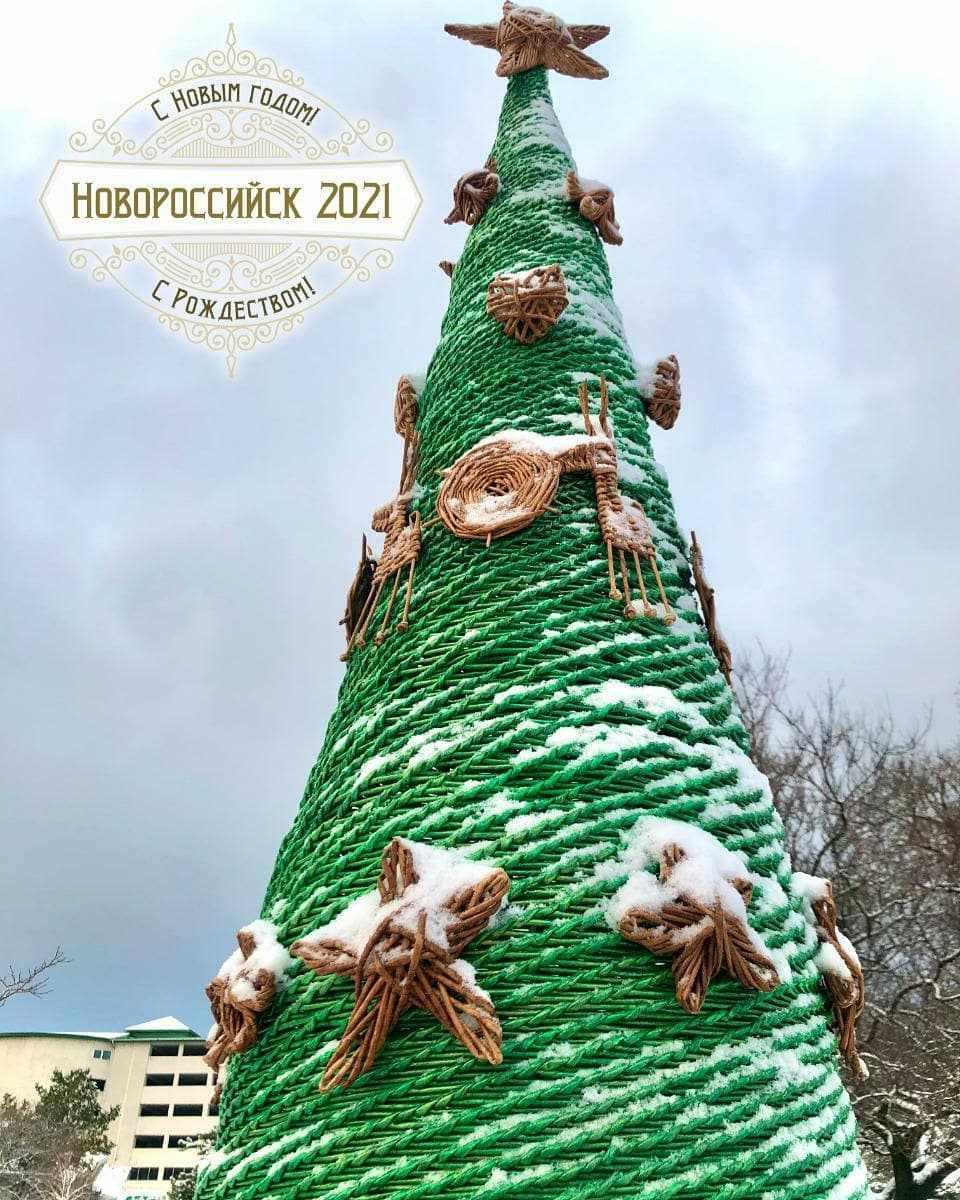 «Бумажная» елка из Новороссийска вошла в Книгу рекордов России