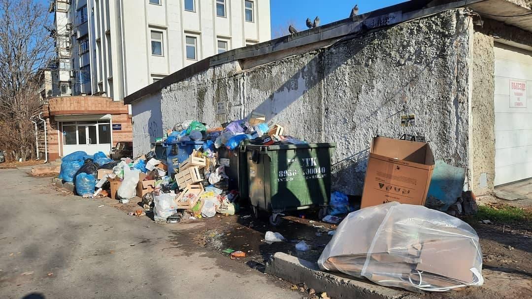 В третьем микрорайоне Новороссийска вместо мусорок – филиалы свалки