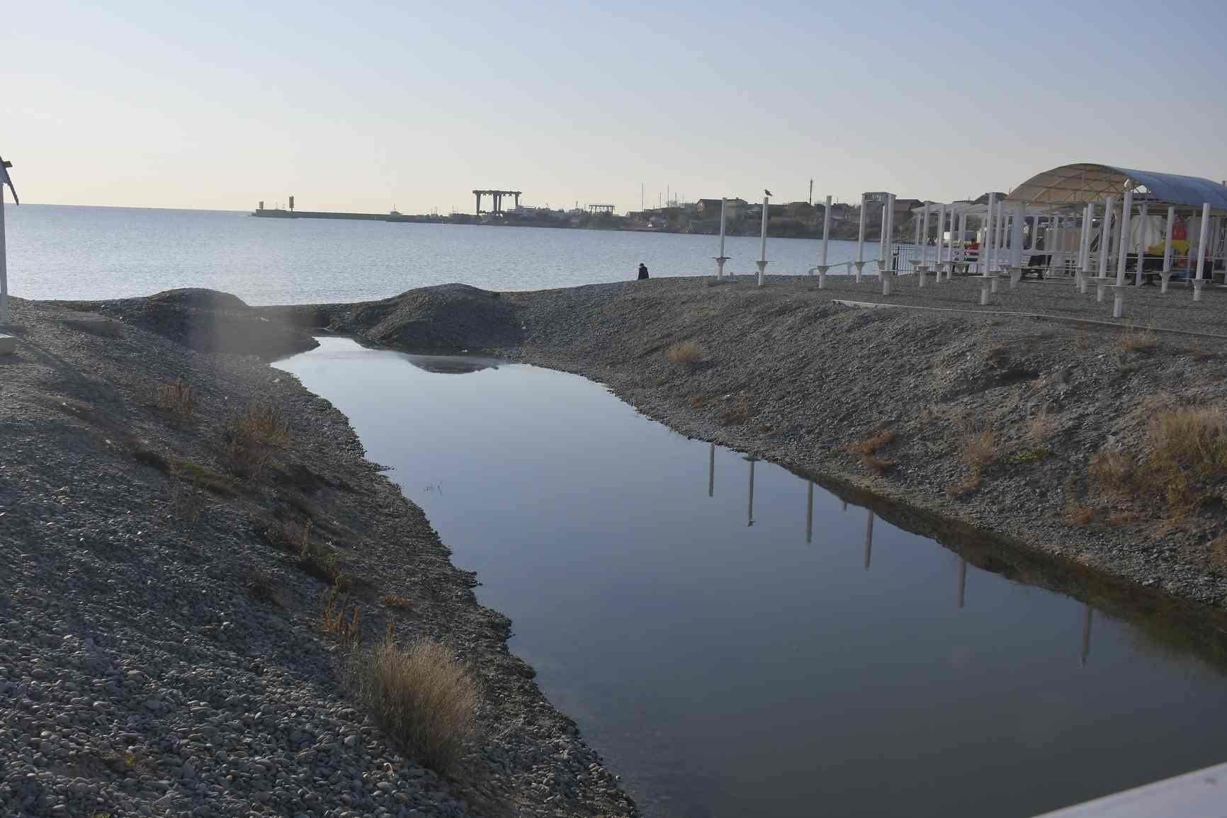 Новороссийцы продолжают раскапывать проран и спасать рыбу