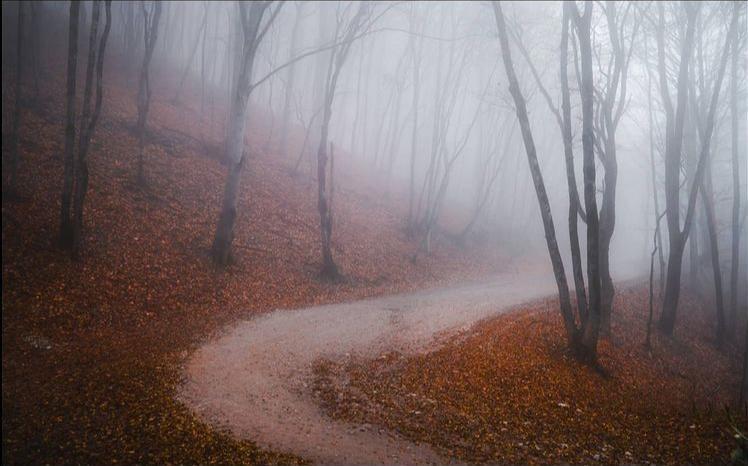 Туман над Неберджаем попал в объектив фотографа Максима Бессалого
