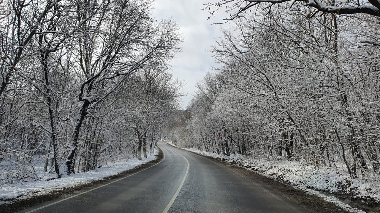 В Новороссийске температура стремится к нулю. В Краснодарском крае возможен снег