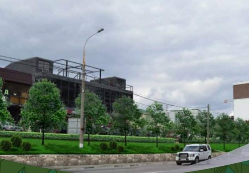 В Новороссийске создадут живую изгородь, которая будет менять свой цвет в разное время года