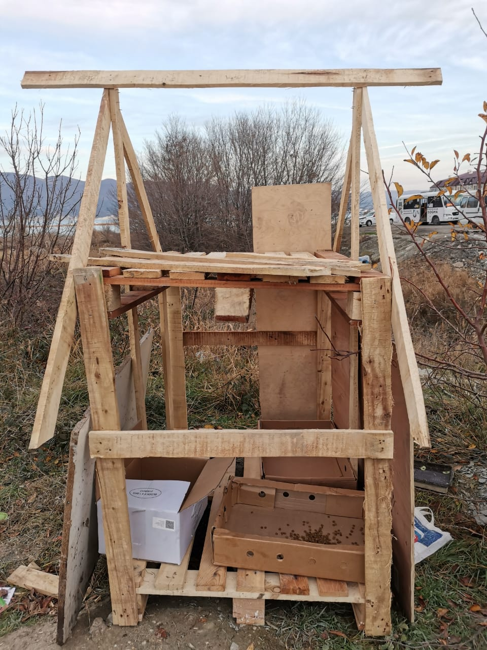 Неравнодушные новороссийцы строят кошкин дом неподалеку от пляжа Алексино