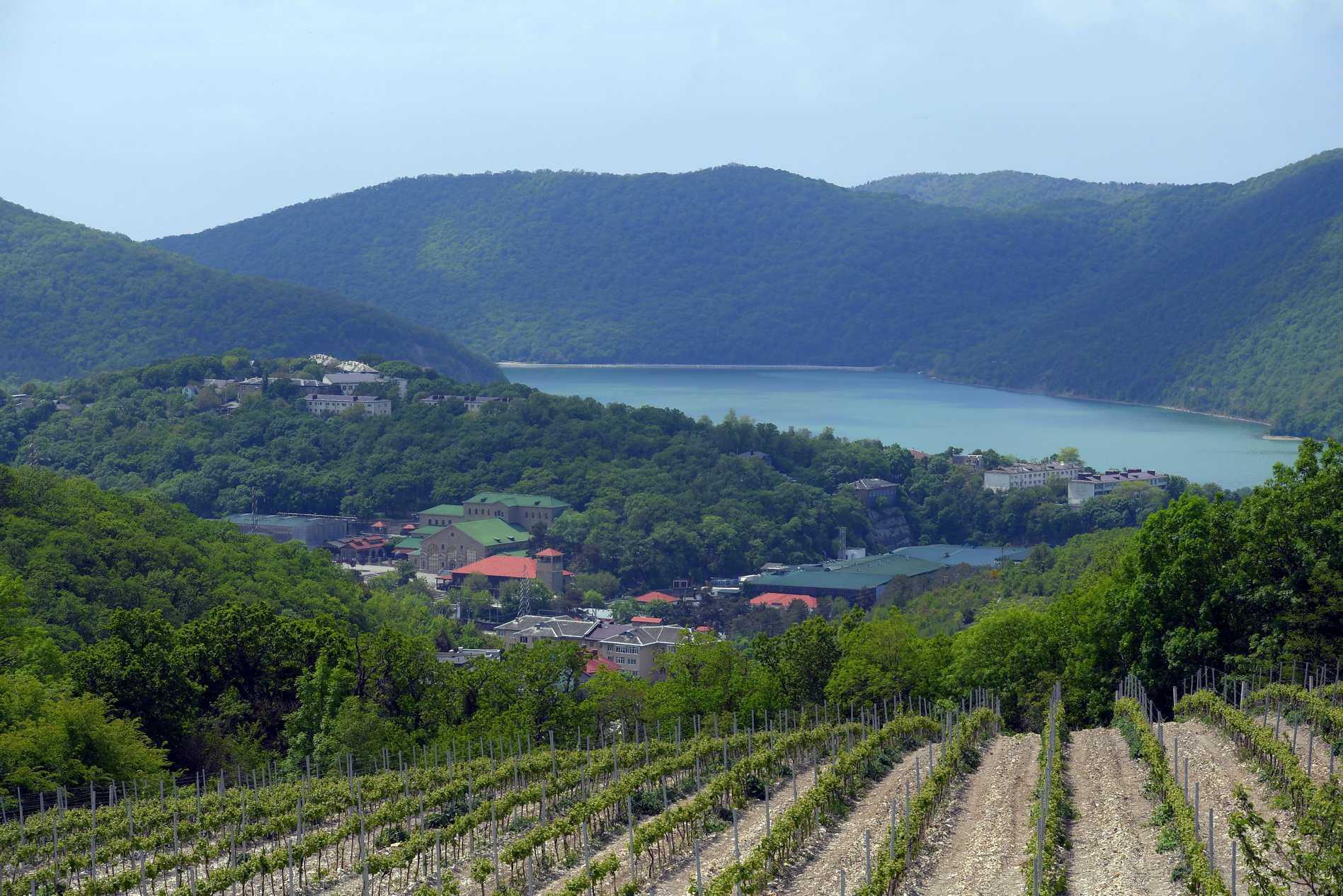 На Кубани в первом чтении приняли закон о запрете перевода сельхозугодий и виноградопригодных земель под жилищное строительство