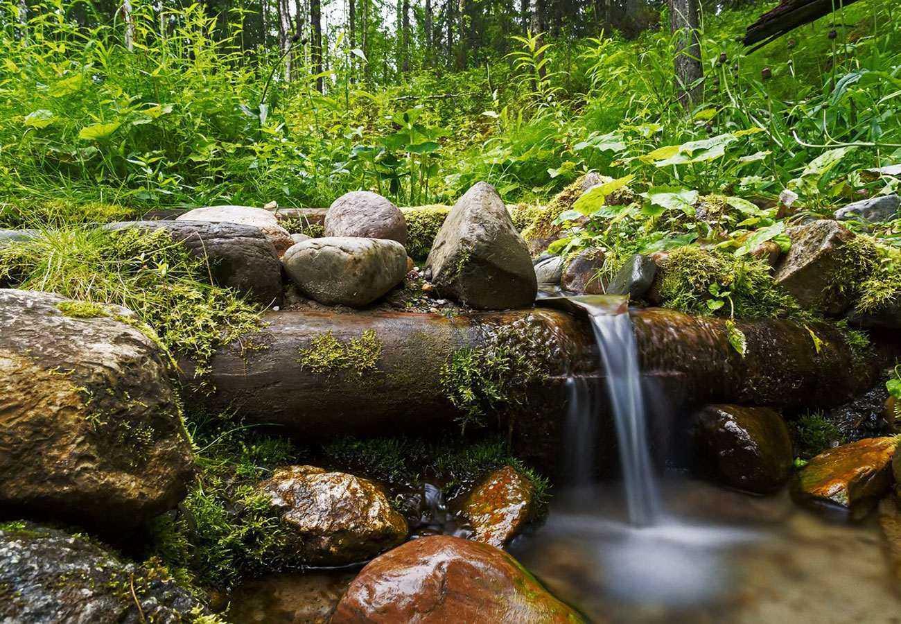 В Пионерской роще появился небольшой фонтан, сделанный руками известного в городе мастера