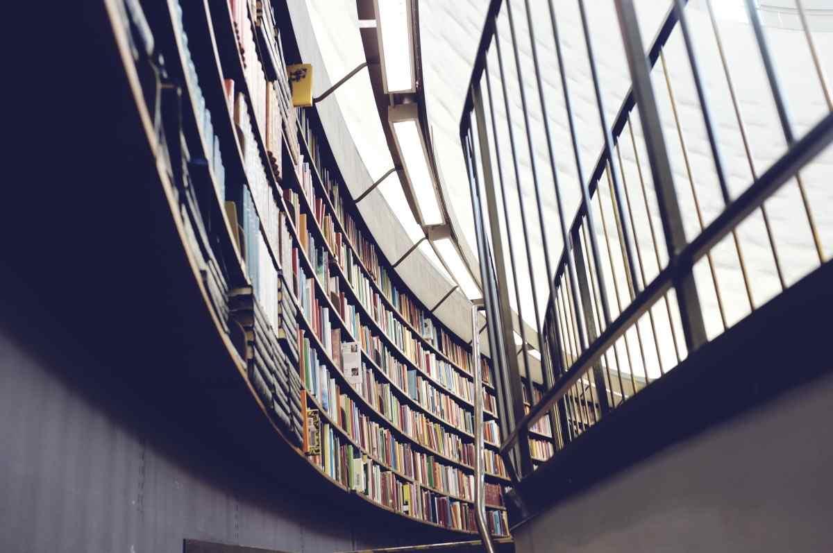 Главный архитектор Новороссийска опубликовал проект будущего библиопарка