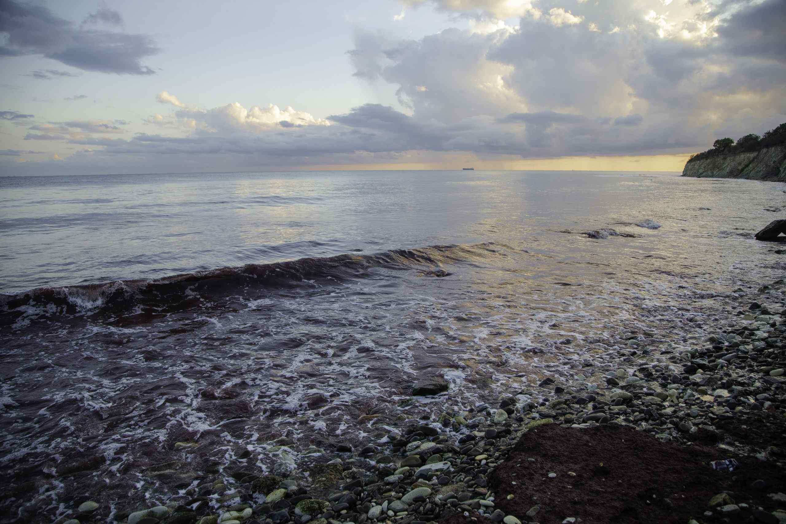 Ученые и экологи выясняют, почему краснеет Цемесская бухта. Экологическая угроза или естественный процесс?