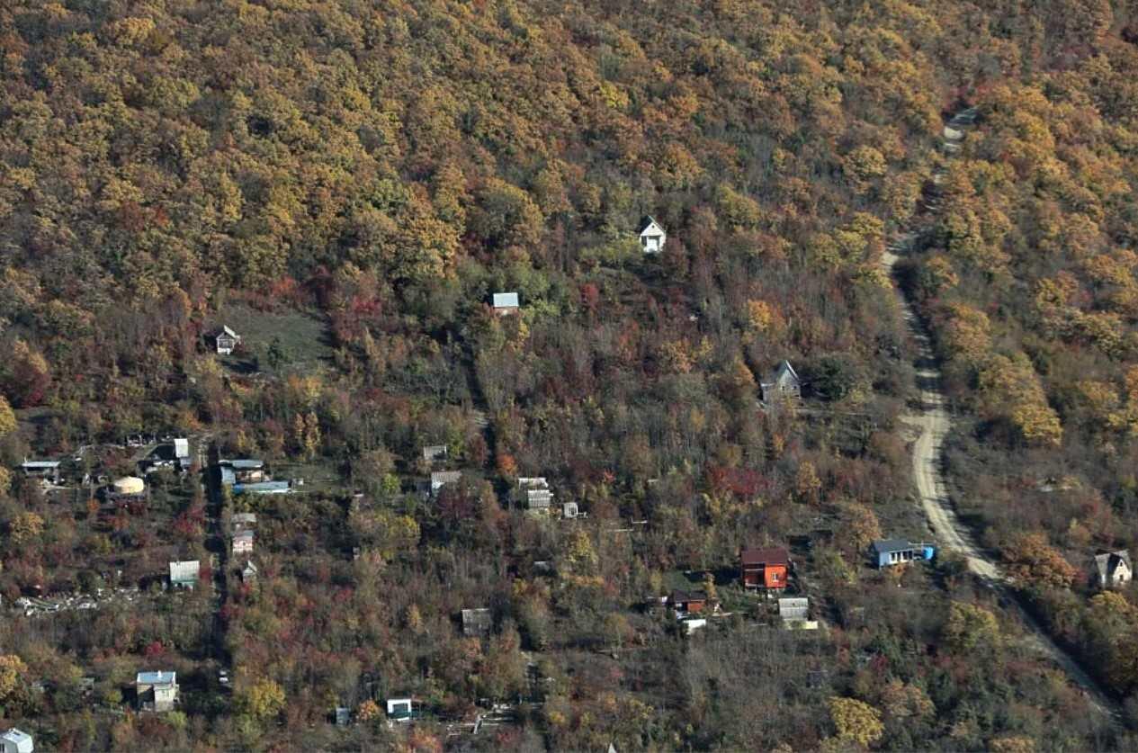 В Новороссийске изменения в генплан сохранят более 1,2 тысячи гектаров леса