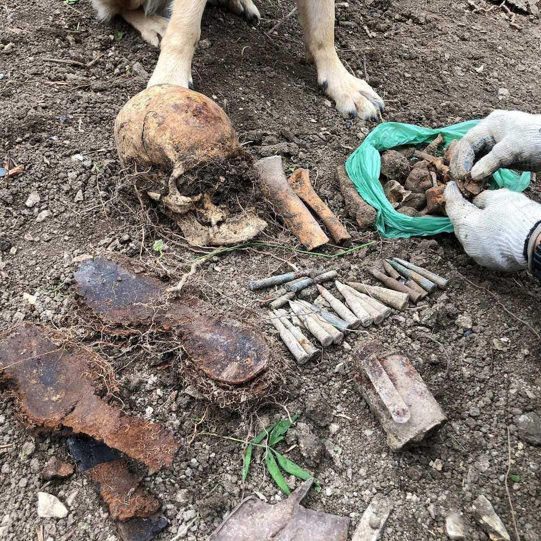 Под Новороссийском при строительстве дач отыскали останки двух красноармейцев