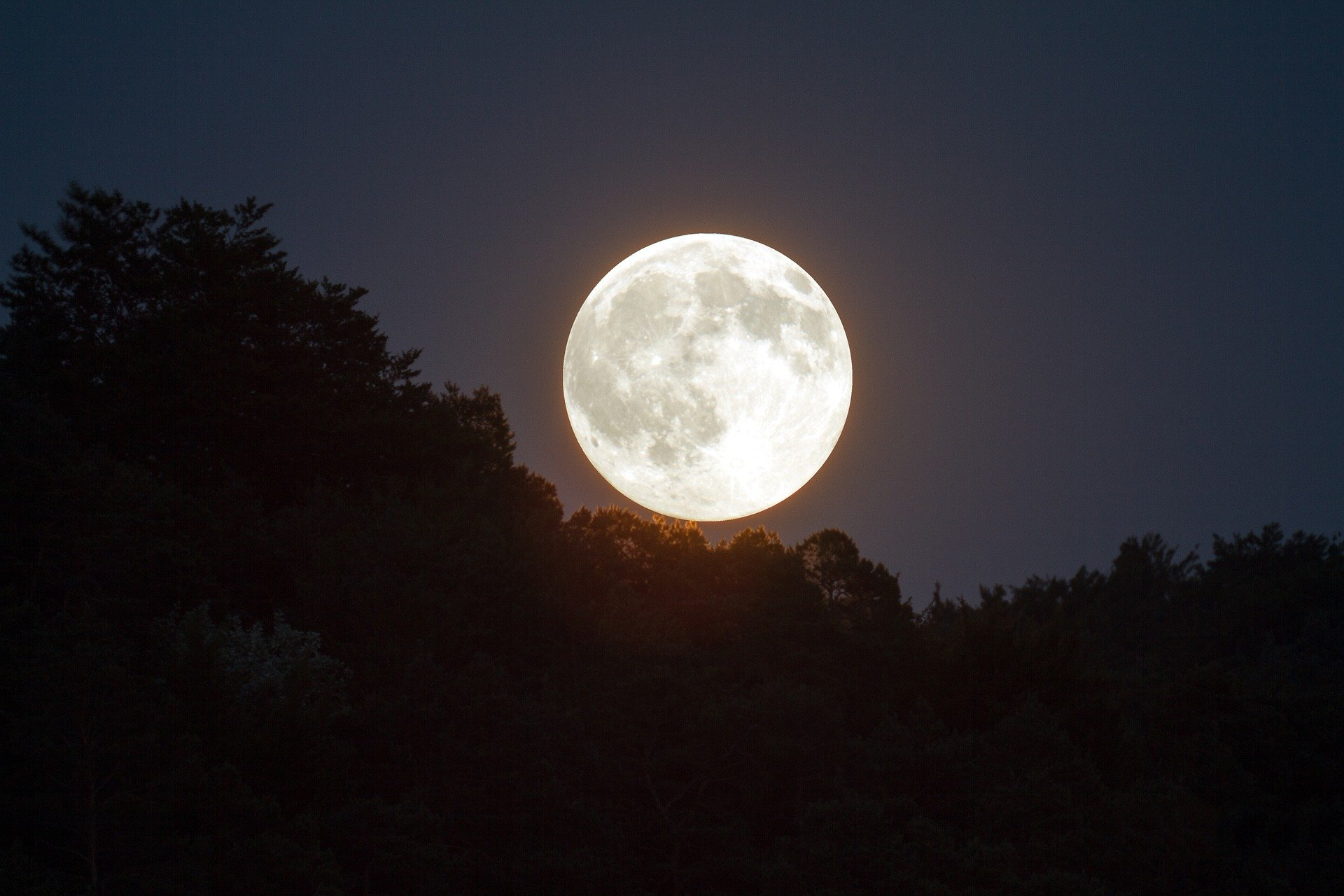 Сегодня в Новороссийске будет лунное затмение и суперлуние