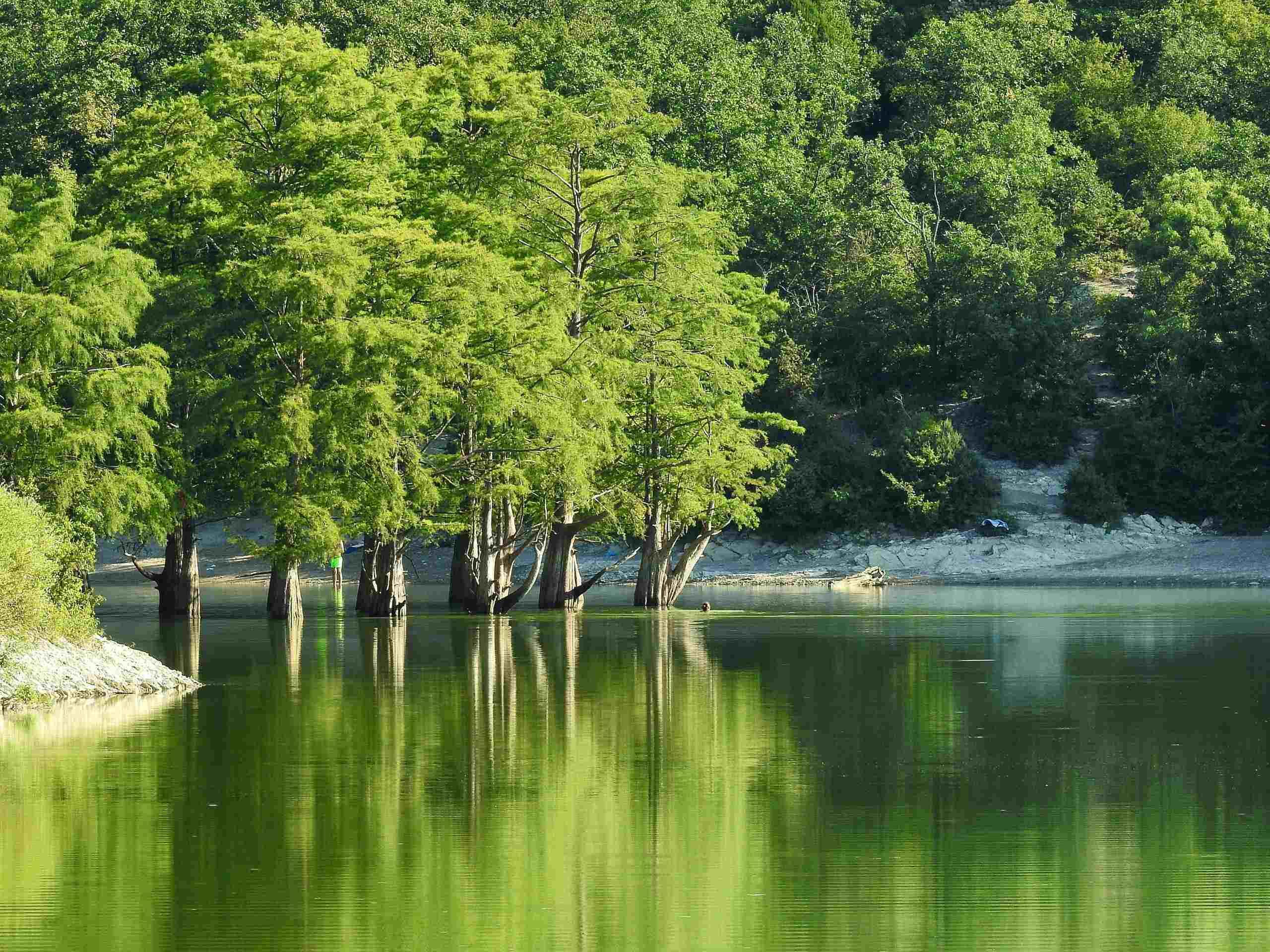 Кипарисовое озеро в «Долине Сукко» хотят вернуть в государственную собственность