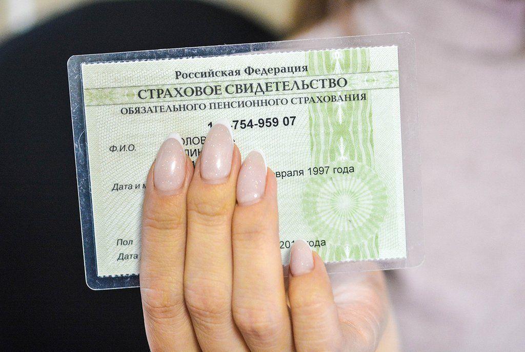 Новороссийцам разъяснили, как получить, заменить и восстановить СНИЛС