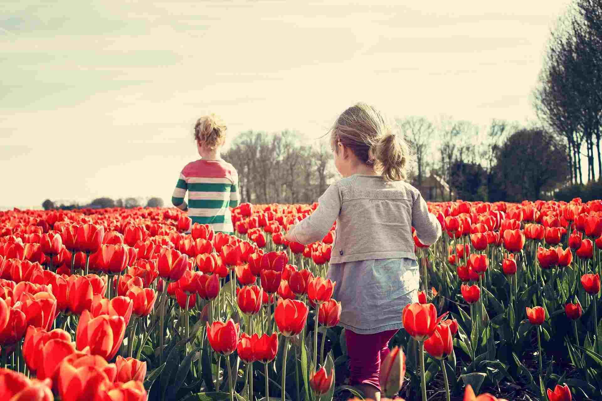 1 июня весь мир отмечает день защиты детей. А о чем вы мечтали в детстве?