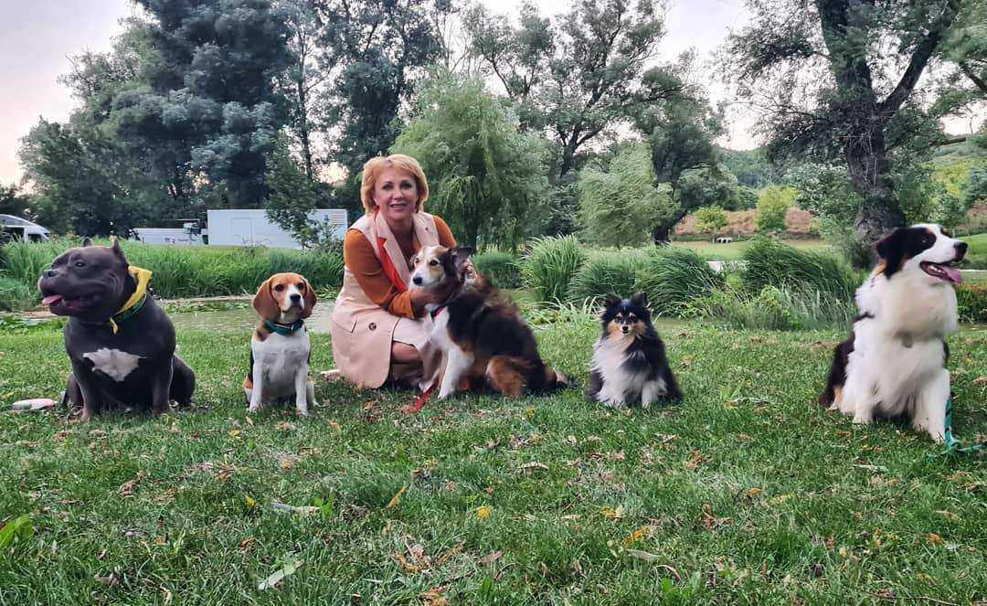 В сериале для «России-1» снимаются уже десять новороссийских собак