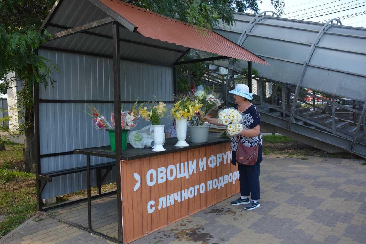 В Новороссийске появились социальные ряды для торговли