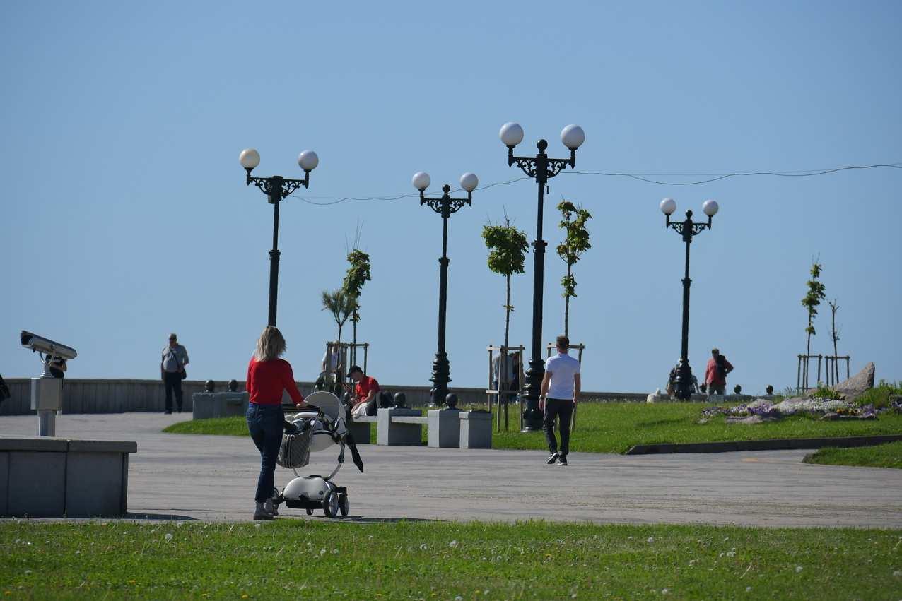 Участники группы «Городские проекты» попросили озеленить площадь морвокзала Новороссийска