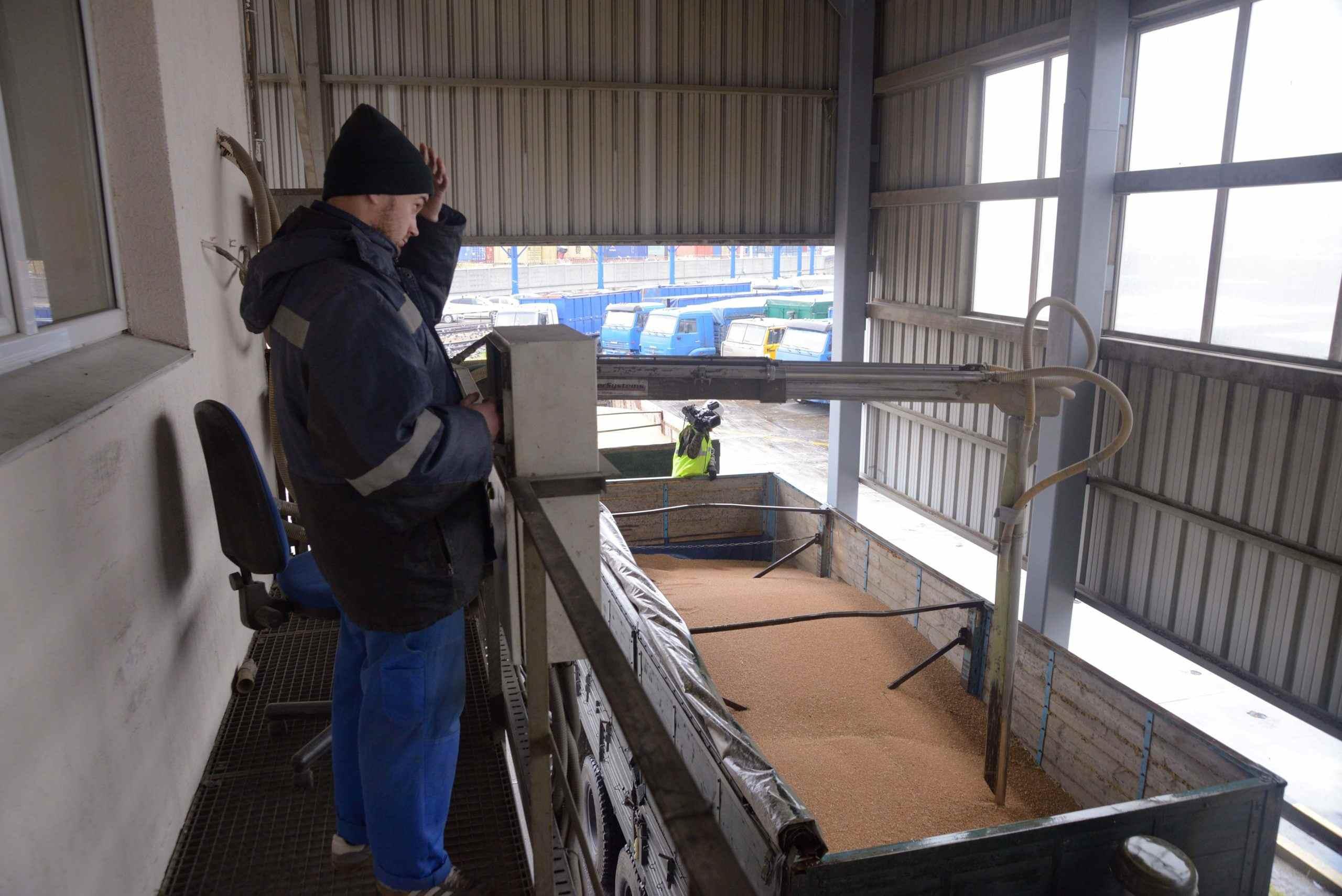 Новороссийск побил экспортный рекорд – пшеница рекой льется за границу