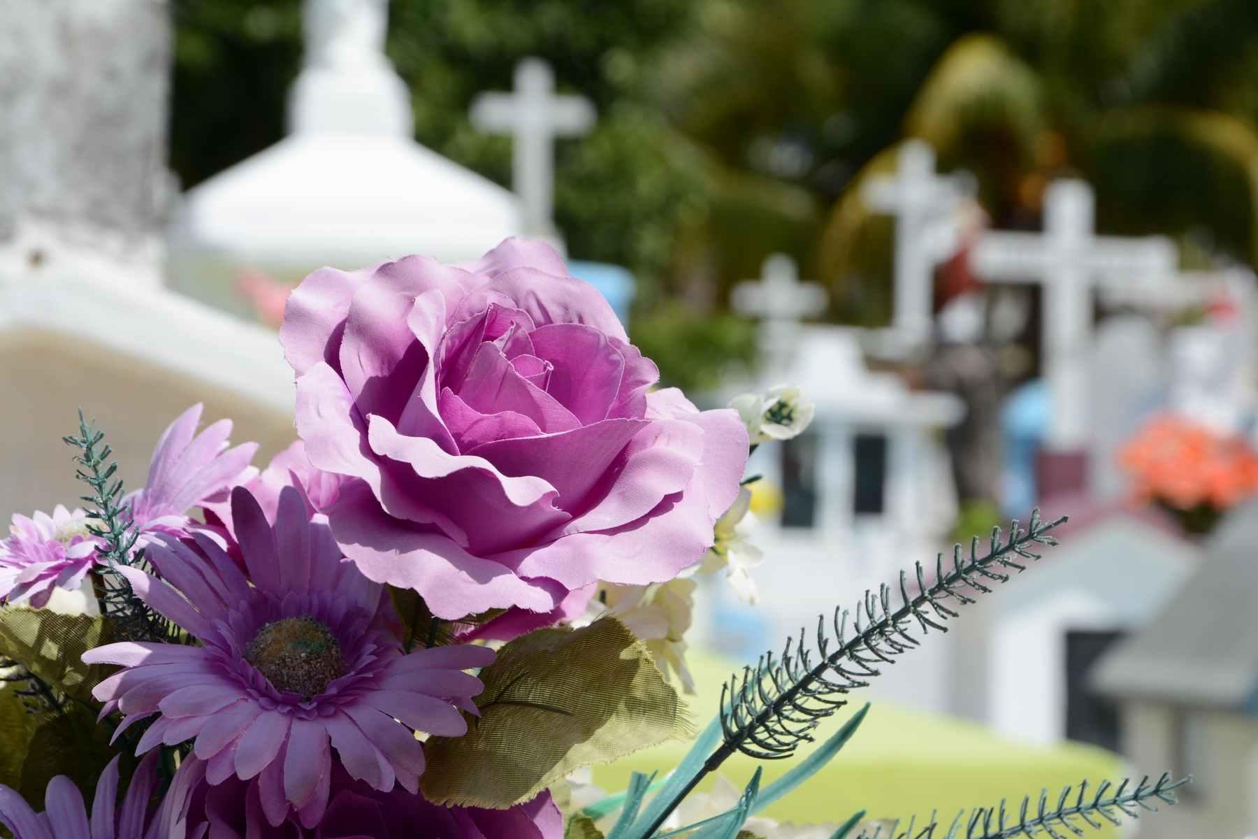 Новороссийцы возмущены запретом новых захоронений на Мефодиевском кладбище