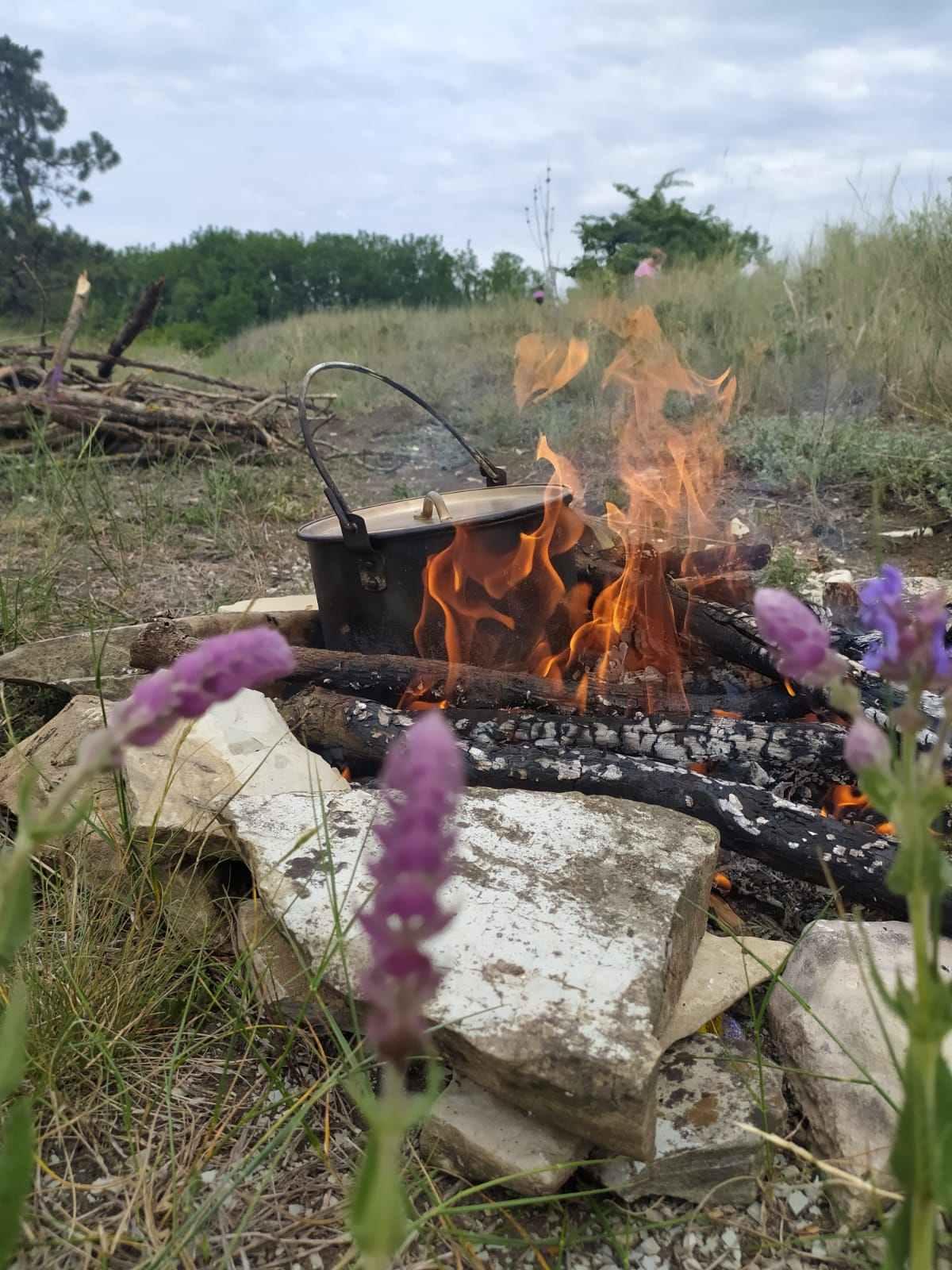 На Кубани в ближайшие дни ожидается высокая пожароопасность 4 класса