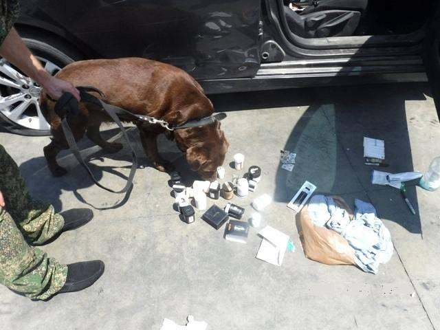 Таможня и пограничники Новороссийска обнаружили наркотики в машинах из США