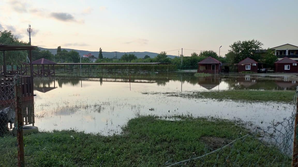 Жители Южной Озереевки в потоп спасали кур и ежей
