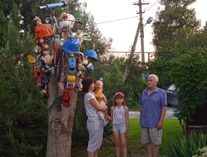 Игрушковое дерево под Новороссийском приманивает детей
