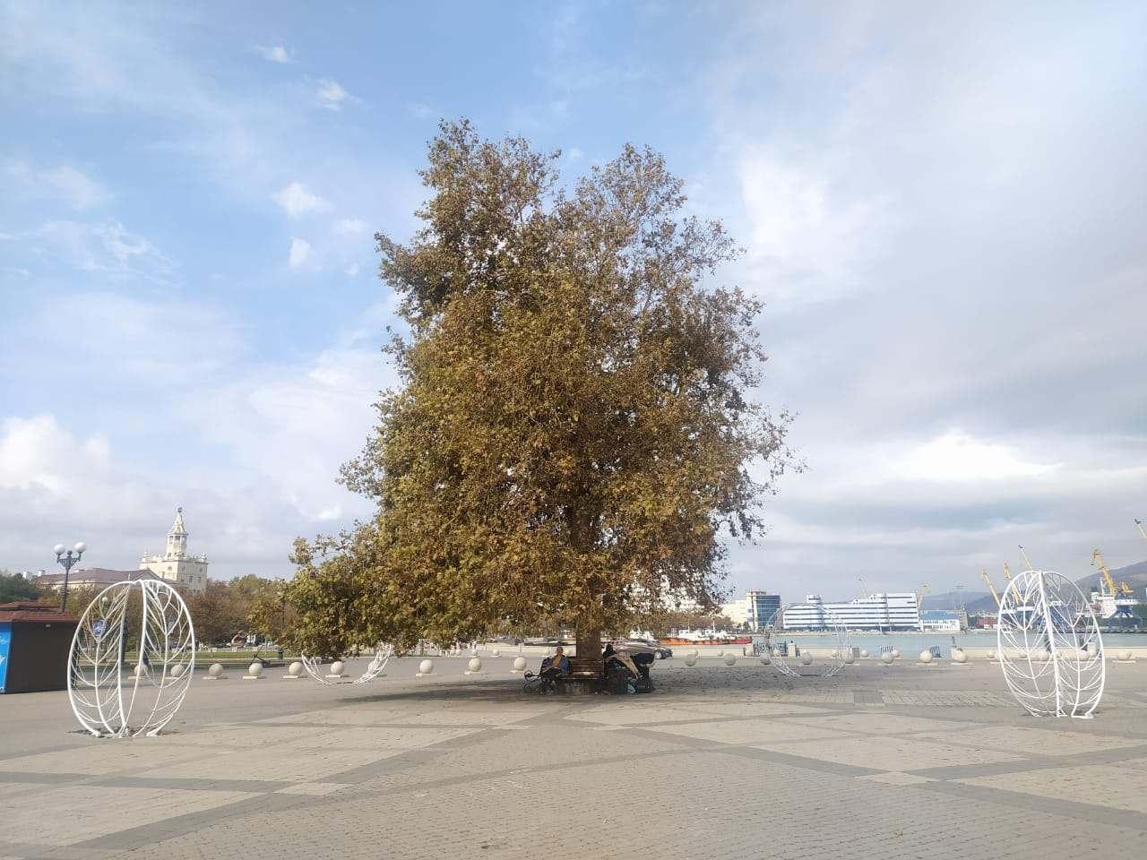 Долгожданные световые качели устанавливают на Форумной площади